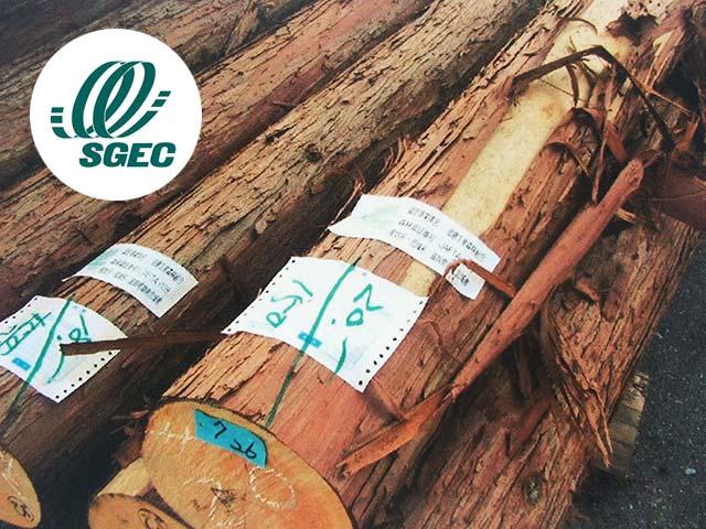 SGEC森林認証木材