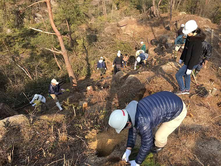 赤松の苗200本を植樹