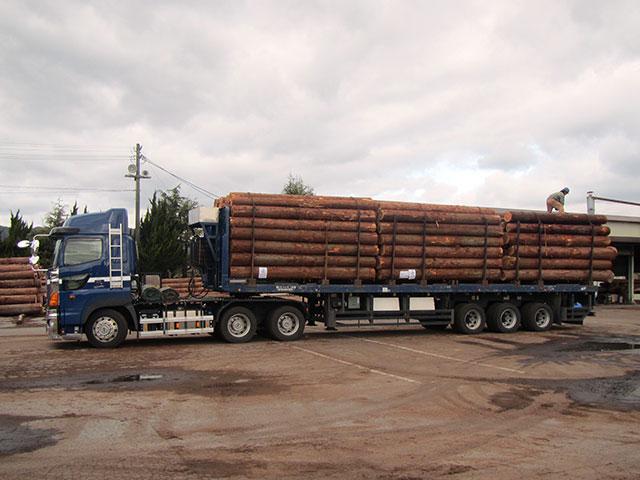新国立競技場用 SGEC認証木材